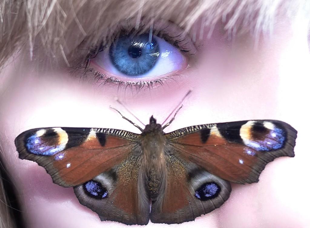 Motýlie krídelká