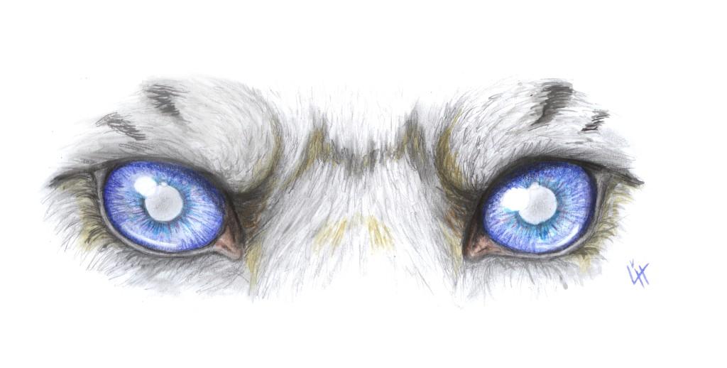 čudné oči, monštrum, vresg