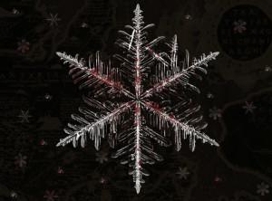 Bloody_Snowflake_by_ashtarrose