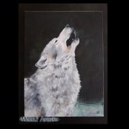 Vlk :3